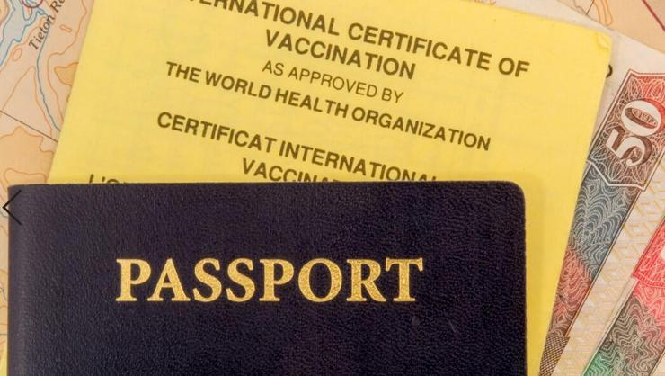 Avrupa Birliği ülkelerine giriş için aşı pasaportu şartı gelebilir