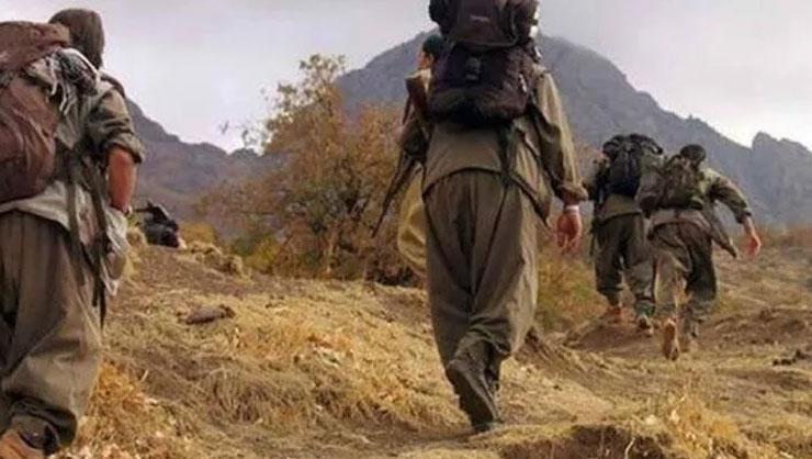 İkna çalışmaları sonucu 1 PKK'lı teslim oldu