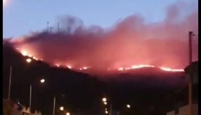 İzmir Foça'da orman yangını! Çok sayıda ekip sevk edildi
