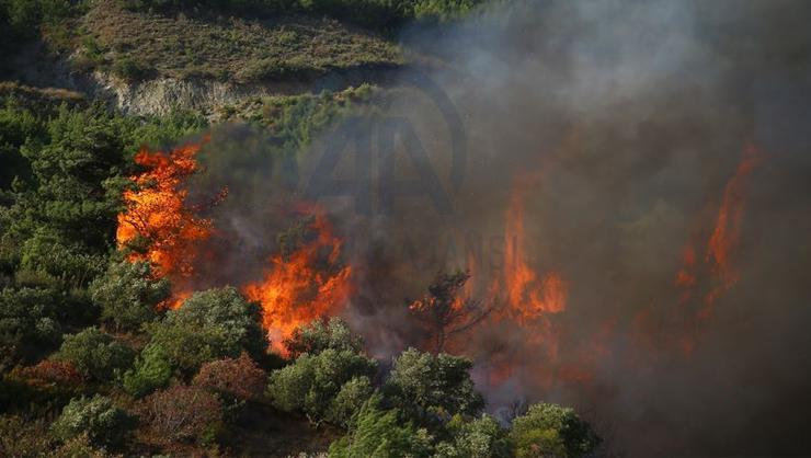 Orman yakma talimatı veren PKKlı terörist etkisiz hale getirildi