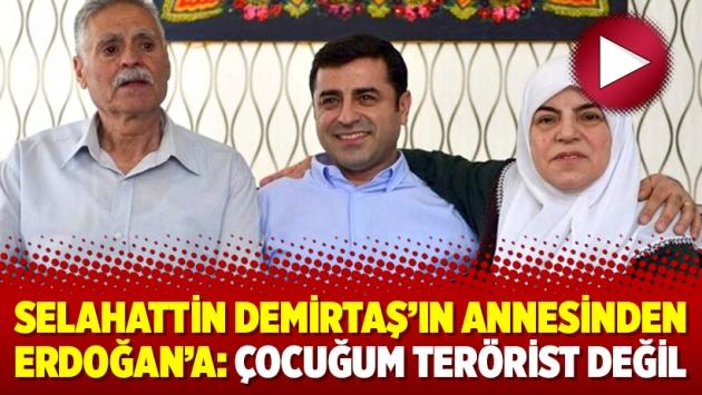 Selahattin Demirtaş'ın annesinden Erdoğan'a: Çocuğum terörist değil