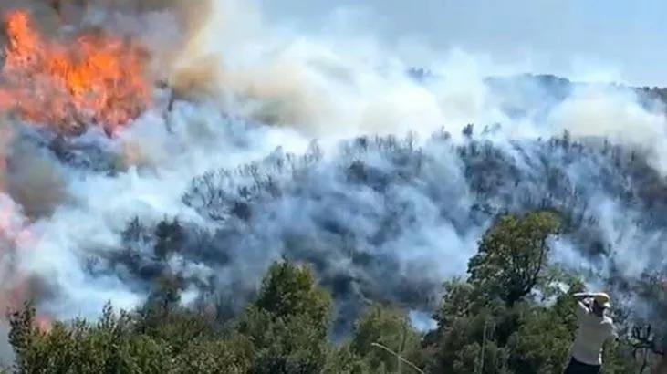 Son dakika: Aydındaki orman yangını Muğlaya sıçradı