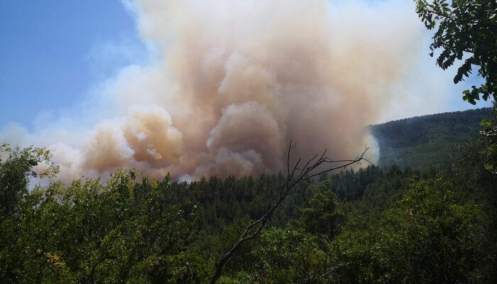Son Dakika: Burdur'da orman yangını! Bazı evler boşaltıldı