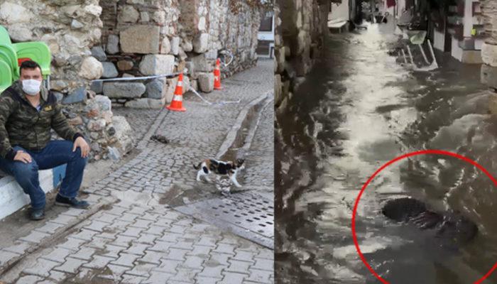 Tsunamiyi çekerken suda sürüklenen babaannesinin cansız bedenini gördü