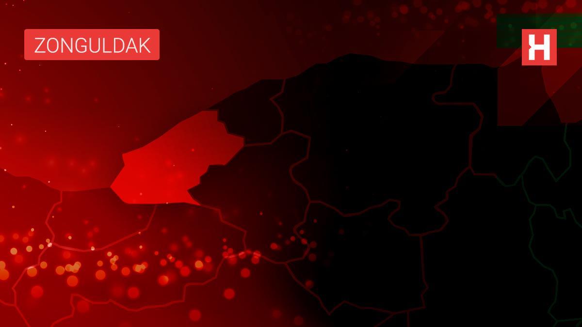 Zonguldak'ta kestiği ağacın altında kalan kişi öldü