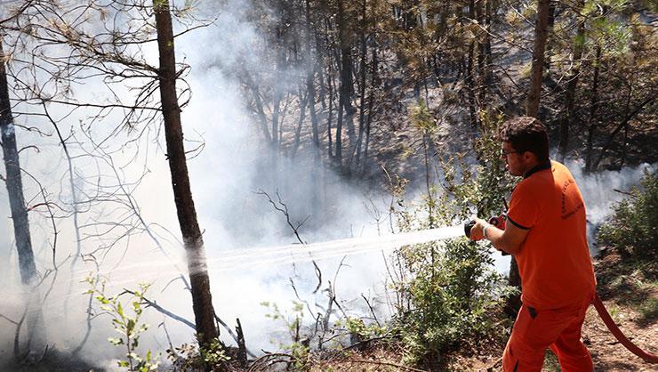 Kastamonu'nun Seydiler ilçesinde çıkan orman yangını kontrol...