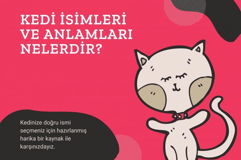 Kedi İsimleri ve Anlamları Nelerdir?