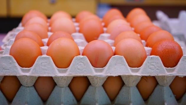 Yumurta fiyatları neden fırladı?